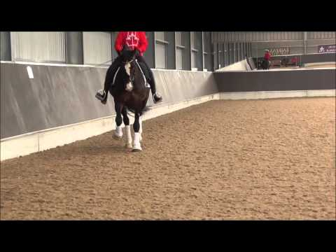 Wonky's Lesson with Gareth Hughes 210316