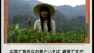 龍井茶の里を訪ねます。「何人家族ですか」中国語会話第27課2009.