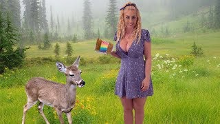 Magical Rainbow Grilled Cheese Sandwich with Dixie the Deer!