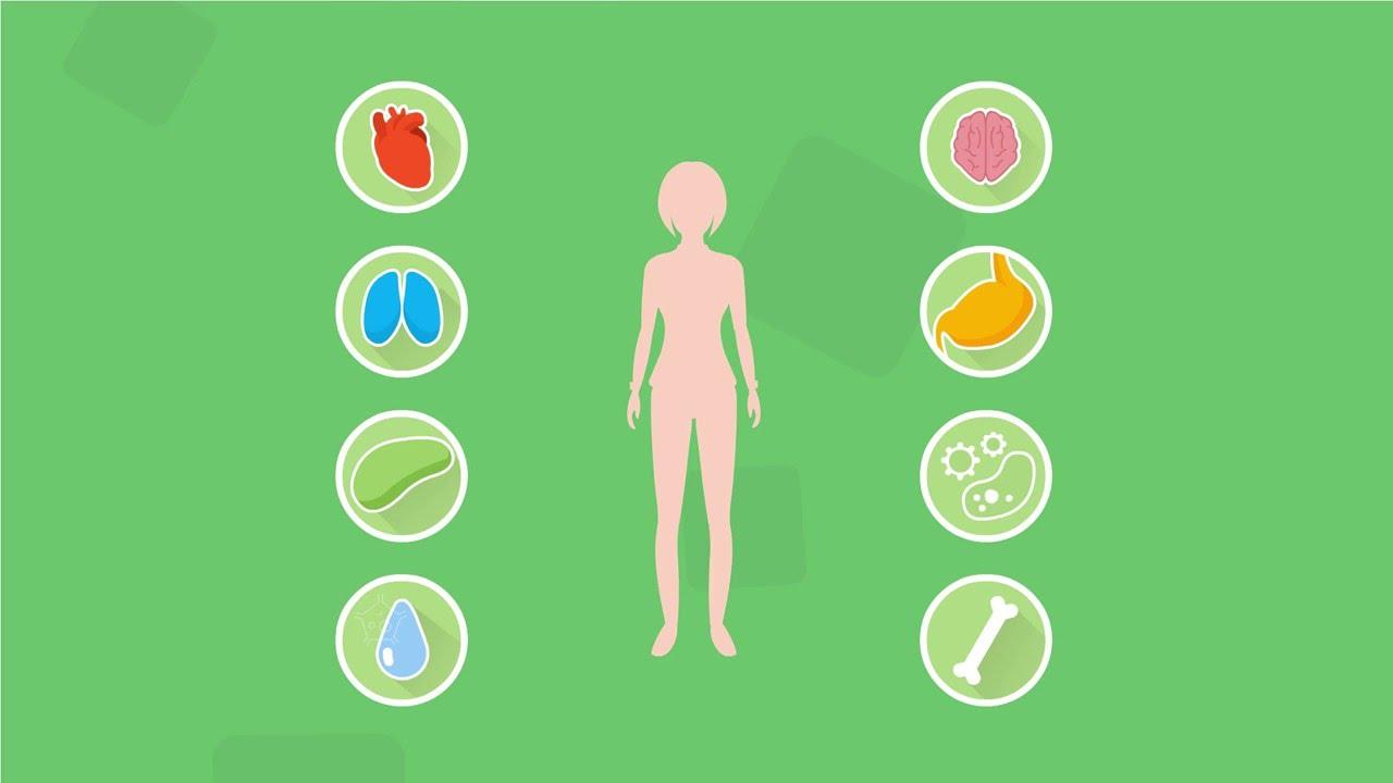 Состав Energy Diet коротко и без ВОДЫ за 9 | nl коктейли для похудения официальный сайт