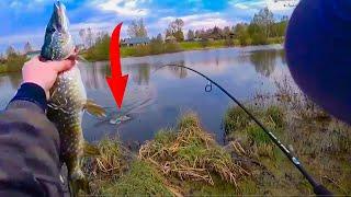 Этот ВОБЛЕР ловит ВСЕГДА Рыбалка на ЩУКУ на спиннинг и на живца Рыбалка 2020