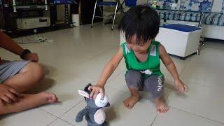 Trò Chơi Con Lừa Nhái Tiếng Và Biết Đi Siêu Dễ Thương | Kids Toy Media