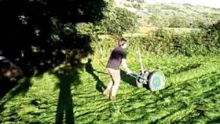 Video allen scythe cutting grass in paddock download MP3, 3GP, MP4, WEBM, AVI, FLV Agustus 2018