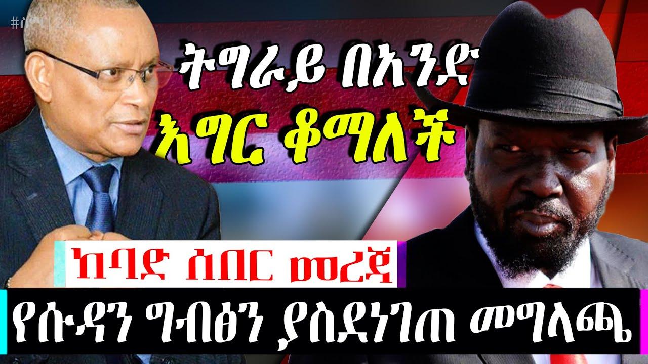ETHIOPIA ትኩስ መረጃ :- ትግራይ በአንድ እግር ቆማላች እና የሱዳን መግለጫ|Tigray Region|SUDAN|