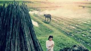 [HD MV] Cho Tôi Lại Từ Đầu - Thanh Ngọc