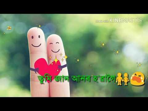 Phul phuleli ki hbo || new video  status  Lyrics song || Montu moini saikia