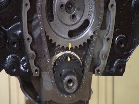 How to install a timing chain