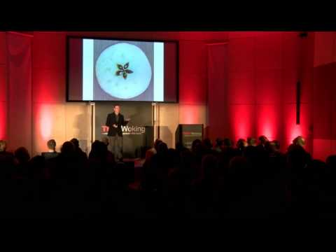 The best teacher in the world | Richard Dunne | TEDxWoking