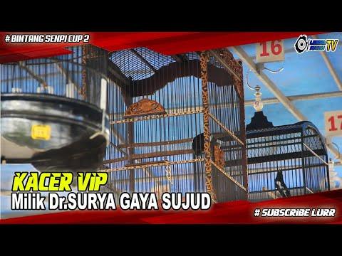KACER VIP Milik Dr. SURYA BERAKSI DENGAN GAYA SUJUD DIHADAPAN JURI