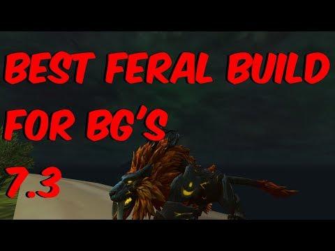 Best Feral Build For BG'S - 7.3 Feral Druid PvP - WoW Legion