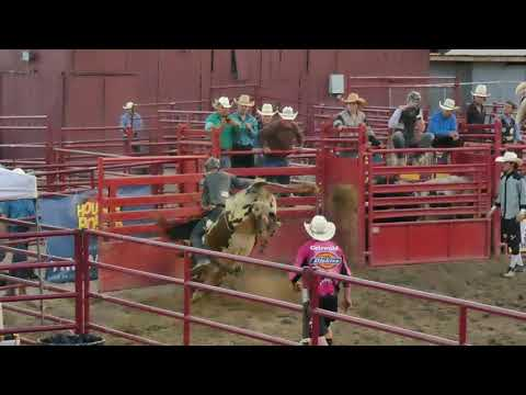 Bull Riding at Orange County Fair Speedway Middletown NY 7-5-2019