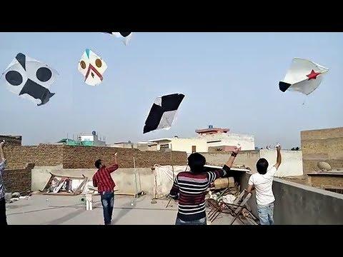 Flying 4 Kites at one time | 2.5 Tawa Gudda / Kite