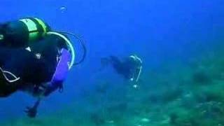 Scuba Diving in Mallorca