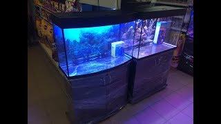 Аквариум Панорама 125, панорамный аквариум 125 литров