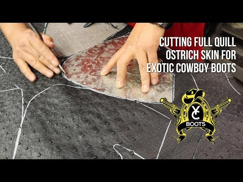 Cowboy Boots: Cutting Full Quill Ostrich Skin
