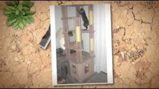 Cat Condo Plans...build A Cat Tree, Save Money & Your Stuff!