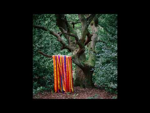 James Holden & The Animal Spirits - Each Moment Like The First
