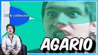 TRAPPED IN A CORNER | Agario