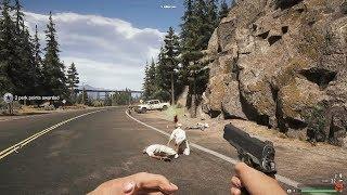 Far Cry 5 | AMD FX-6300 | GeForce GTX 1060 6GB | 8GB RAM