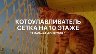 Сетка решетка своими руками на балконе для защиты кошек от падения