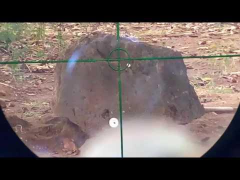Kamera senapan angin