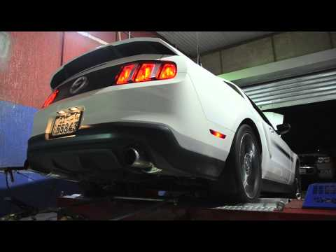 Ford Mustang 5.0 CS Supercharged Dyno