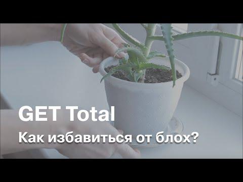 Как избавиться от блох при помощи GET Total?