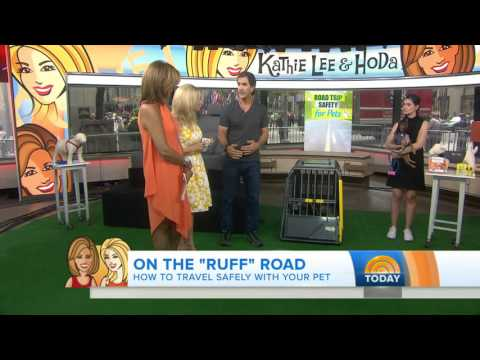 NBC Today Show with Kathy Lee and Hoda - Pet Safety with Robert Cabral - Dog Trainer & Behaviorist
