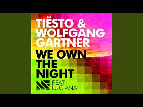 We Own The Night (feat. Luciana) (Radio Edit)
