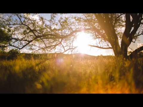 Bob'Ezy feat. Mazola - Ntombi (DJ Lesh SA's Drum Remix)