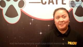 M.A.I Meow Cafe