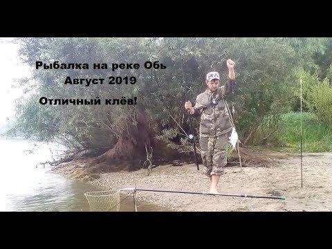 Рыбалка на Оби. Отличный клёв!!! Август 2019