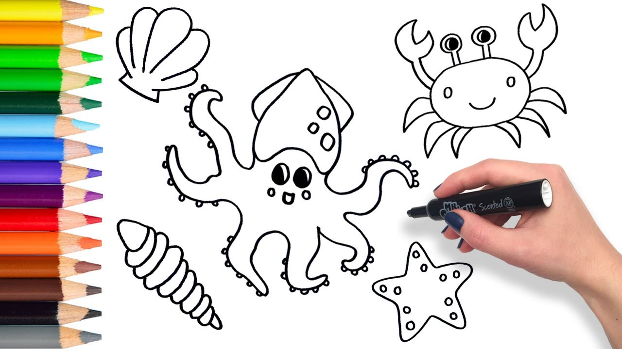 how to draw sea creatures compilation coloring pages for kids