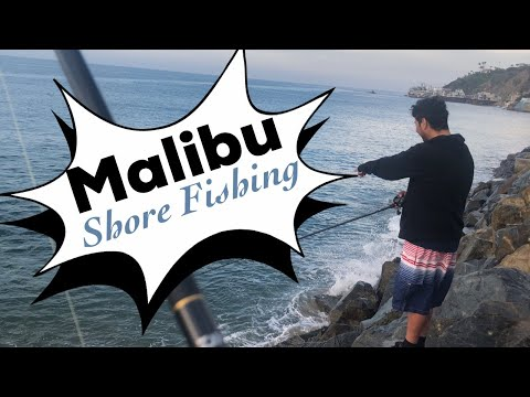 Malibu Surf Fishing
