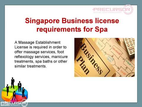 Industry-Specific Business Licenses in Singapore