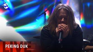 Peking Duk Ft. SAFIA 'Take Me Over' (live at triple j's One Night Stand)