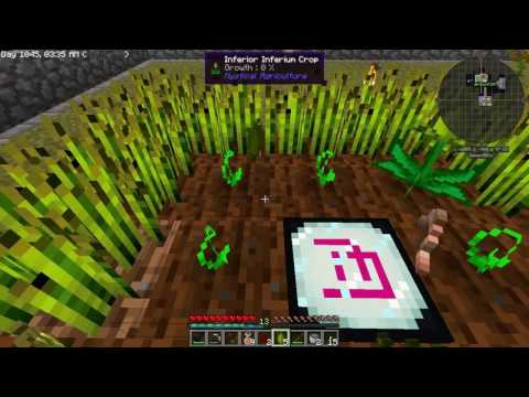 SkyFactory 3 with Direwolf20 - Episode 10 - OP Growth