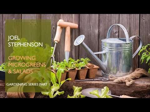 True Education Ministries School of The Prophets Practical Workshop 4 - Gardening Part 1