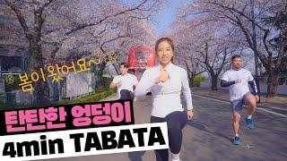 벚꽃터널에서 '엉덩이 폭파' 4분 힙운동 타바타 | 대…