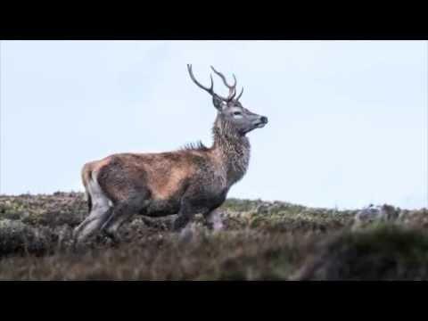 The Road To the Western Isles - Glencoe To North Uist Via Skye
