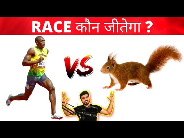 5000000 रूपए की क्रिकेट बॉल / World Most Expensive cricket ball / Fact Express 48