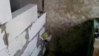Hammom yangilash. Aerated beton devorlar