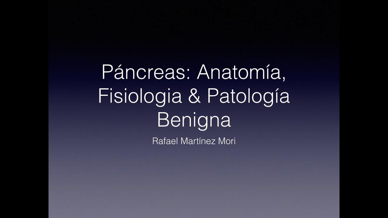 Páncreas: Fisiología & Patología Benigna (Pancreatitis Aguda ...