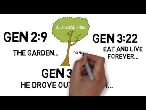 THE TREE OF LIFE EXPLAINED