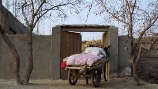 The Edge of the Bazaar: A short documentary about Uyghur rural life