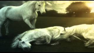 Lost - Sad Scene Background Soundtrack | Royalty Free Music