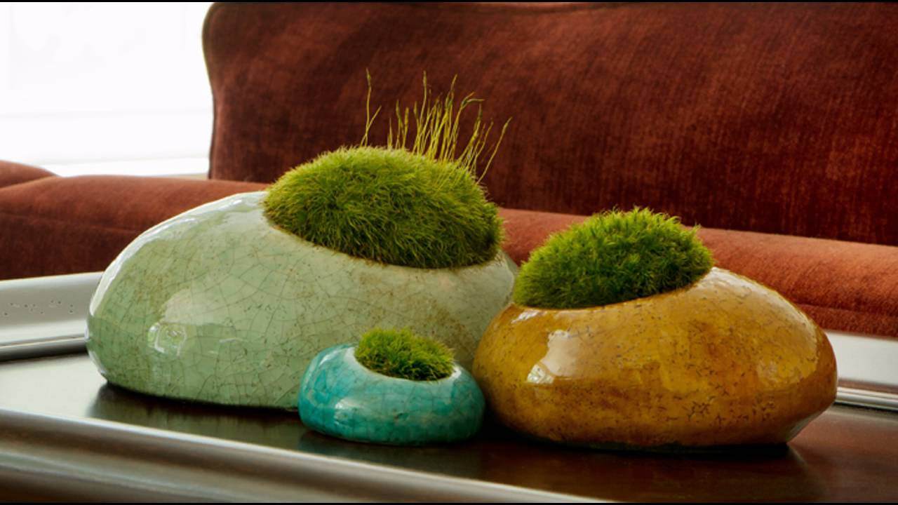 Garden ideas indoor rock garden ideas youtube garden ideas indoor rock garden ideas workwithnaturefo