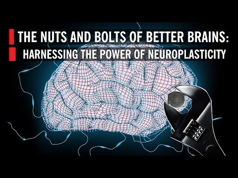The Nuts and Bolts of Better Brains: Harnessing the Power of Neuroplasticity | 2019