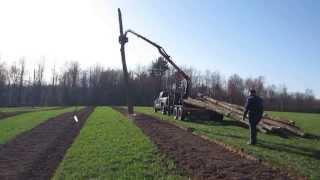 Installing Hops Poles