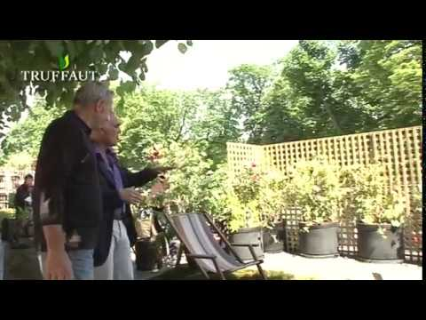 Comment am nager un petit balcon jardinerie truffaut - Comment amenager un petit balcon ...